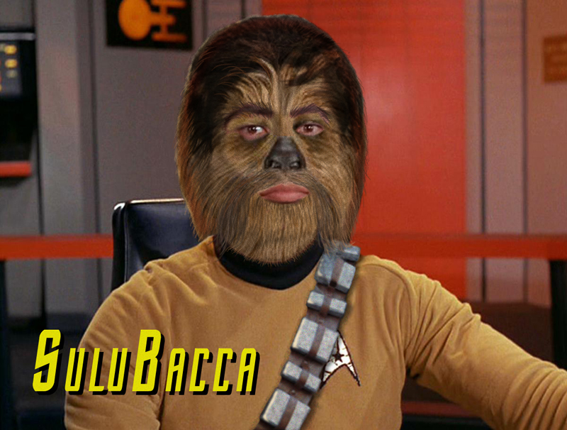 sulubacca
